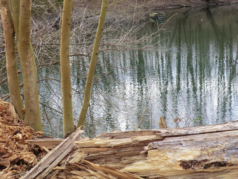 Fahr_Grenzsteine und Bäume FB (8)